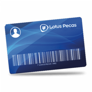 Lotus-Pecas-kart